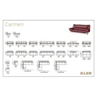 CARMEN Other resources