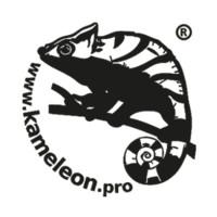 Kameleon.pro