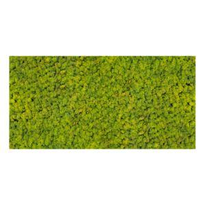 Panel 100x50 chrobotek-55 SPRING GREEN
