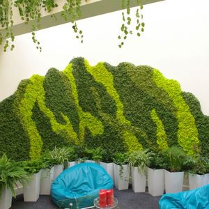 4 Nature Moss - zielona ściana z chrobotka