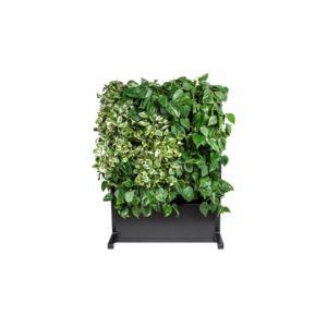 4 Nature Basic - zielone mobilne meble