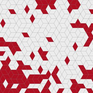 Shapes-Fusion_bordowy.jpg