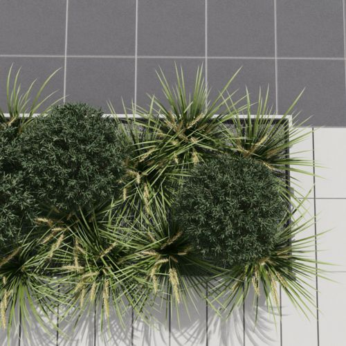 Ewa Kloc- landscape architect