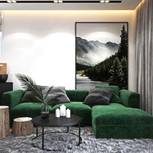 Mieszkanie w Rzeszowie z zielonym akcentem