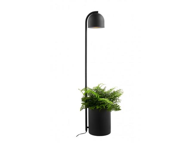 Lampy stojące, BOTANICA XL, Kaspa Sp. z o. o.