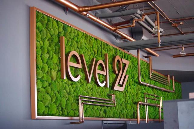 Zielone rozwiązania, 4 Nature Moss - zielona ściana z mchu leśnego, 4Nature System Wertykalni